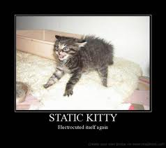 static kitty